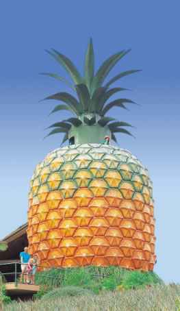 The Big Pineapple - Redcliffe Tourism