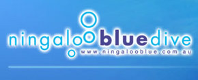 Ningaloo Blue Dive - Redcliffe Tourism