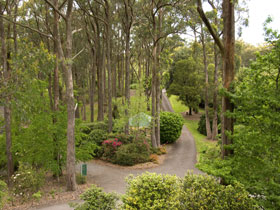 Mount Lofty Botanic Garden - Redcliffe Tourism